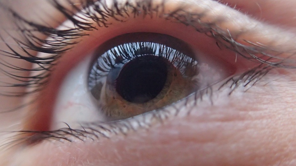 eye-321961_960_720